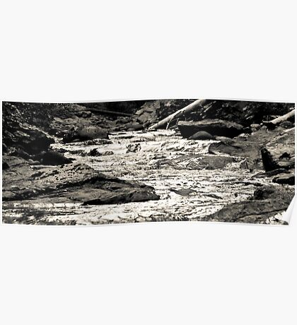 Salmon River Rapids Poster