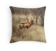 Hartebeest Throw Pillow