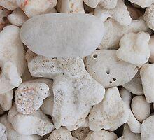 Rock n' Coral by Tamie Bee