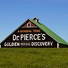 Dr. Pierce's Barn by mpalcic
