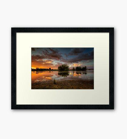 Singled Out Framed Print