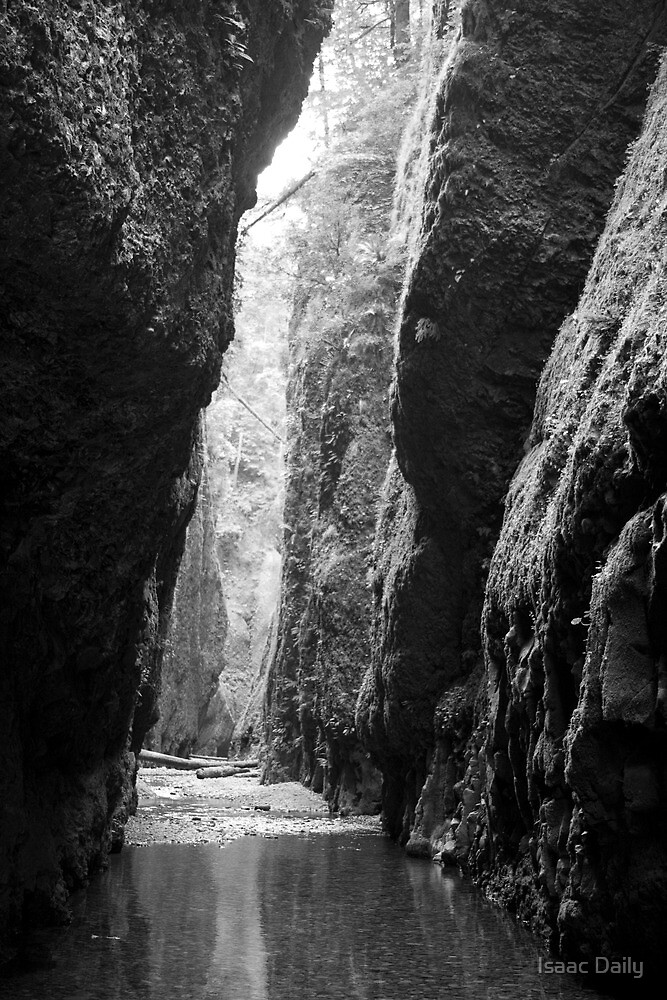 Oneonta Gorge by Isaac Daily