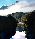 Spey River, south island, NZ by Odille Esmonde-Morgan