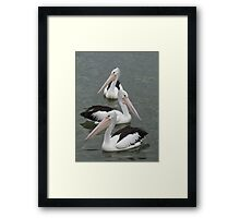 3 in a Row Framed Print