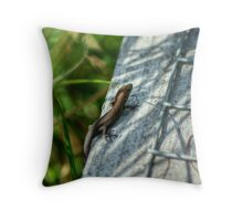 Jamie's Little Brother... Throw Pillow
