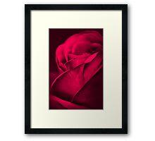 Wake (Rose) Framed Print