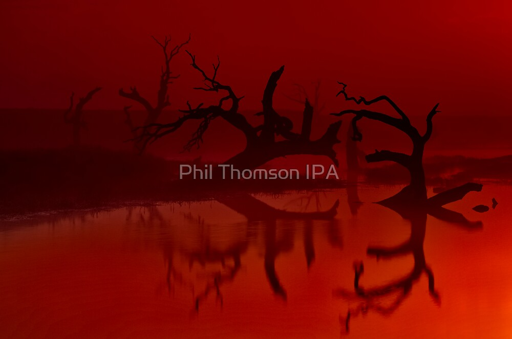 """Silhouettes in the Mist"" by Phil Thomson IPA"