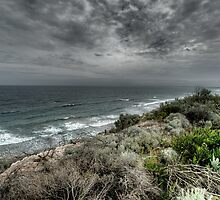 Barwon Heads Back Beach by Leanne Robson
