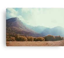Mountains in the background V Metal Print