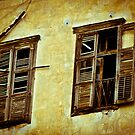 broken windows by petitejardim