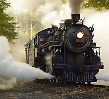 Steam Locomotive by Tom Gotzy
