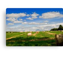 Autumn Field Canvas Print