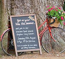 Kingston Lacy Bike ride by LorrieBee
