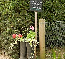 Recycled wellie's by LorrieBee