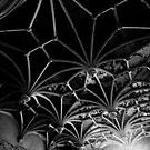 Network by Richard Pitman