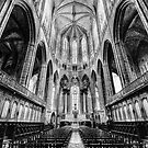 Churches and Cathedrals of Europe by Luke Griffin
