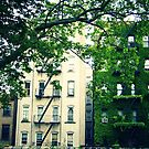 A Tale of Two Buildings - East Village - New York City by Vivienne Gucwa