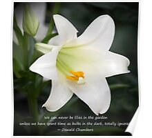 Uplifting Lily Poster