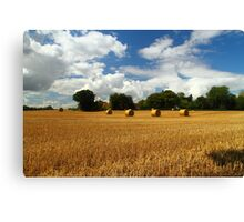 Rural Delight Canvas Print