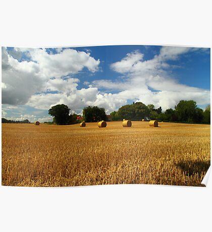 Rural Delight Poster