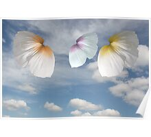 Butterfly Poppies Poster
