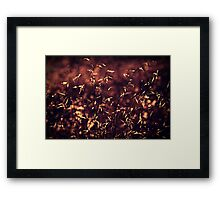 From a small speck of stardust to wondrously sentient Framed Print