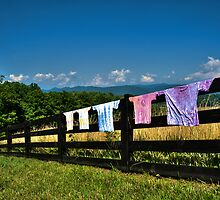 Drying In Virginia Sunshine by Peggy  Woods Ryan