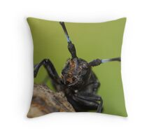 long-horned beeble again  Throw Pillow