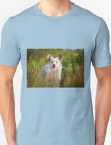 Single white stray tyke dog  T-Shirt