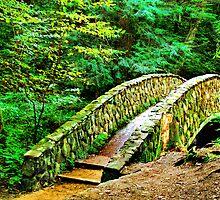 Bridge to Paradise by Marcia Rubin