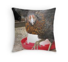 If you're so smart… let's see YOU do the Chicken Dance!!! Throw Pillow