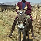 Boy on a Donkey - Dundee, South Africa by Bev Pascoe