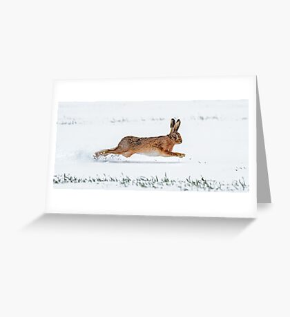 Brown Hare running in the Snow Greeting Card