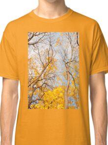 Yellow autumn leaves on trees  Classic T-Shirt