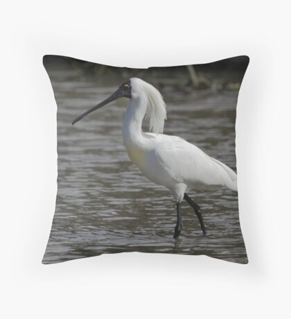 Royal Spoonbill, South Australia  Throw Pillow