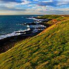 Sunlit Headland by Stephen Ruane
