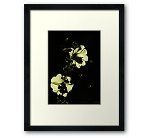 First Nectar of the Day Framed Print
