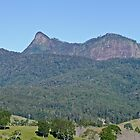 Mt Warning by Margaret  Hyde