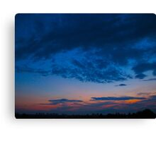India Ink and paintbrush nights Canvas Print