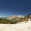 July Snowpack Little Cottonwood Canyon by Ryan Houston