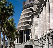 NZ Parliament by jacquelinekvz