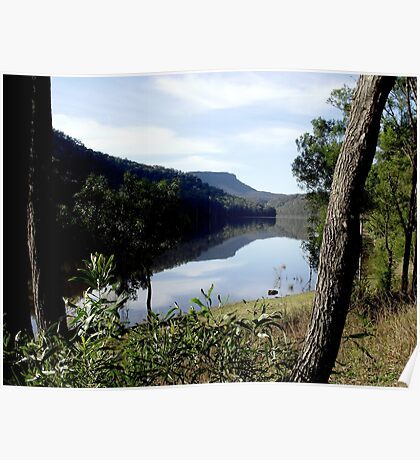 Tallowa Dam  between the trees Poster