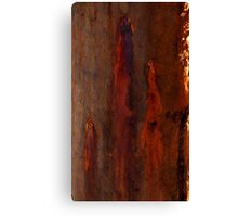 Textures - Bleeding Gums Canvas Print