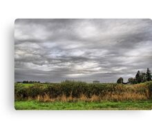 Along A Country Road Canvas Print
