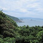 View from Oshima Island, Japan  by Sunny Shaffner