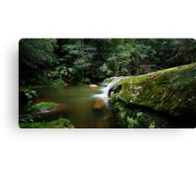 A Parallel View - Somesby Falls Canvas Print