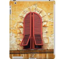 Red Shutters iPad Case/Skin