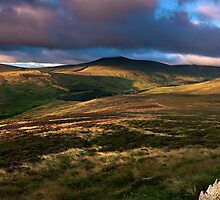 """""""View from Cold Law""""  Northumberland by James  Key"""