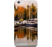 Stanley Park Harbour in the Fall iPhone Case/Skin
