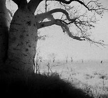 Mysterious by Mel Brackstone